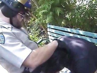 Gay Bears Outdoor Blowjob